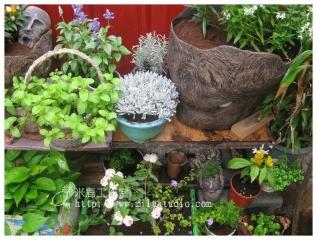 米鹿工作室落腳處-小花園